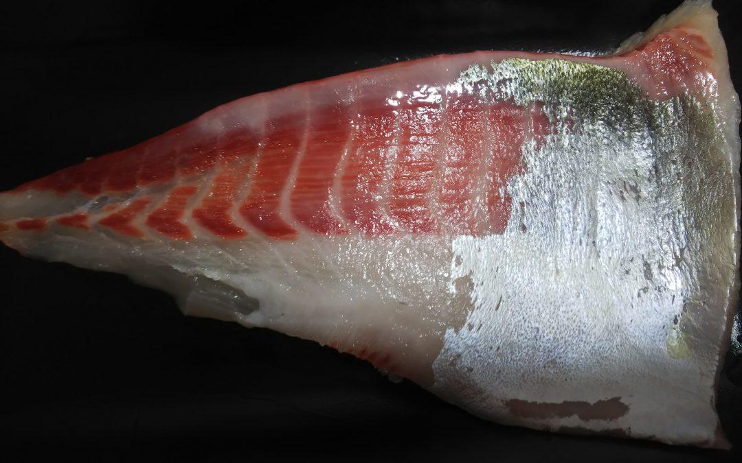 シマアジのお刺身はやっぱり美味しい