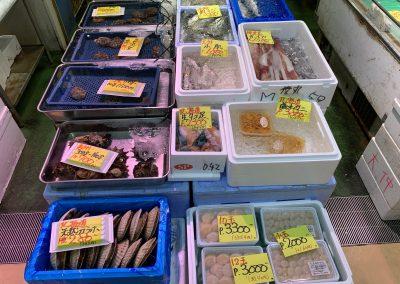 大仲 貝と青魚