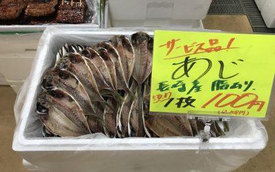 9月4日の築地魚河岸 店頭レポート